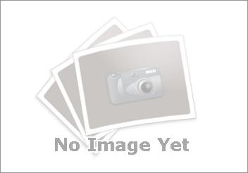 Tranh tĩnh vật Hoa - Mã: SDTTVT013